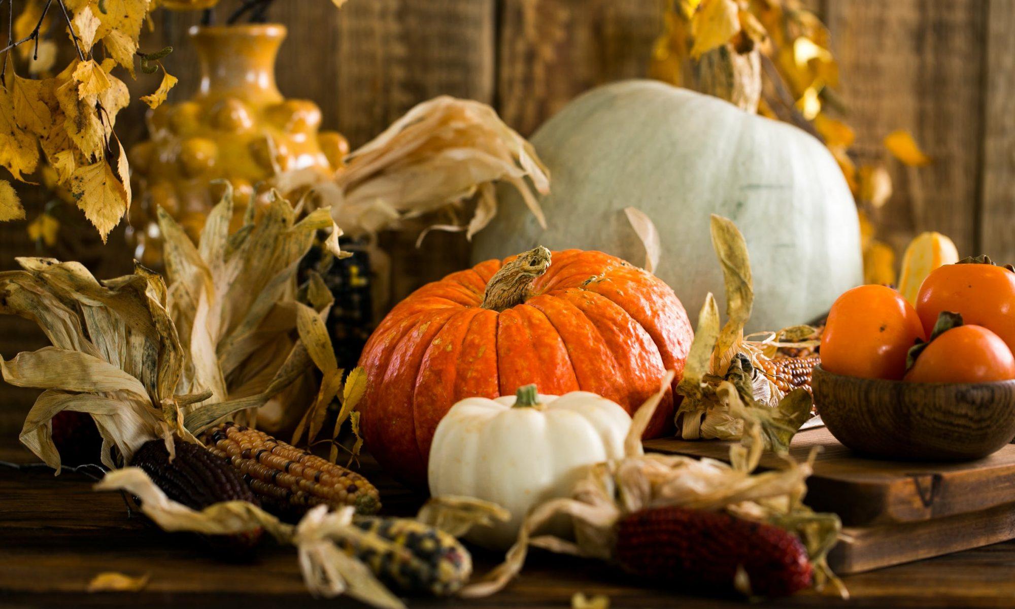 Thanksgiving Marketing Campaigns